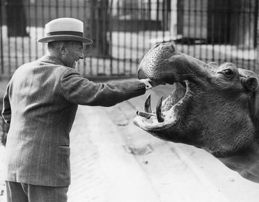 100+ Completely Random But Cool Pictures From History ( Part 2 )